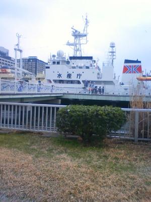 201103151